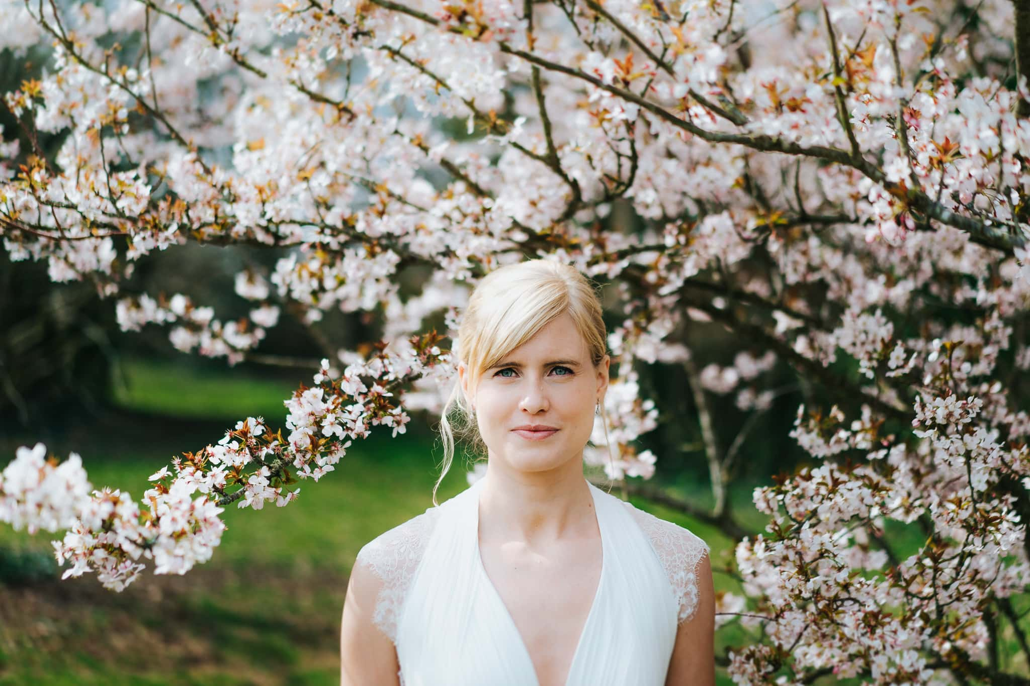 isle of wight wedding bridal portrait under cherry blossom